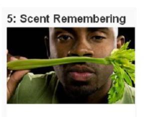 secnt