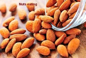 nuts eating