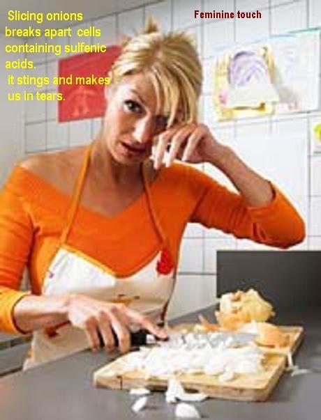 cutting onions2