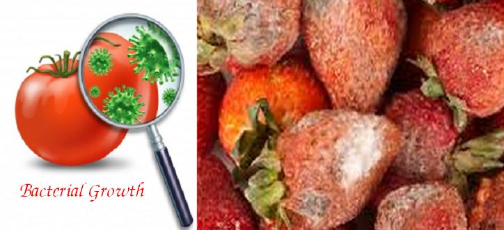 food spoilage Spoilage is the process in which food deteriorates to the point in which it is not edible to humans or its quality of edibility becomes reduced various external forces are.